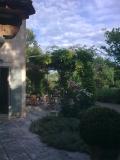 architect-jardin-architecte-13210-renovation-saint-remy-de-provence